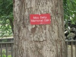 Miss Betsy lives on in this tree, if not in the abandoned Biblical Gardens.
